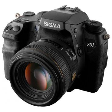 Sigma SD1 Merrill в Минске