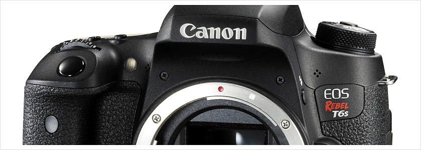 canon-problem-sigma-novosti