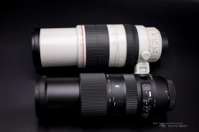 Sigma 100-400mm f/5-6.3 DG OS HSM C лучше Canon 100-400L II?