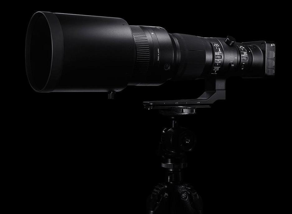 Sigma 500mm F4 DG OS HSM Sports photo