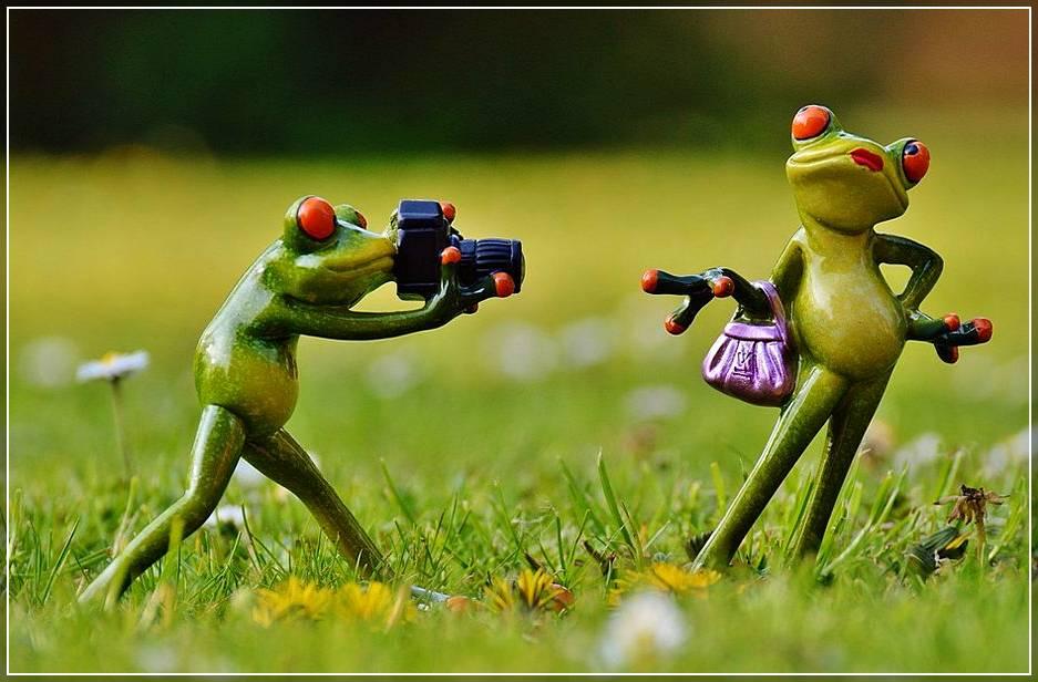 Фотосессия летом и съёмка у профессионалов