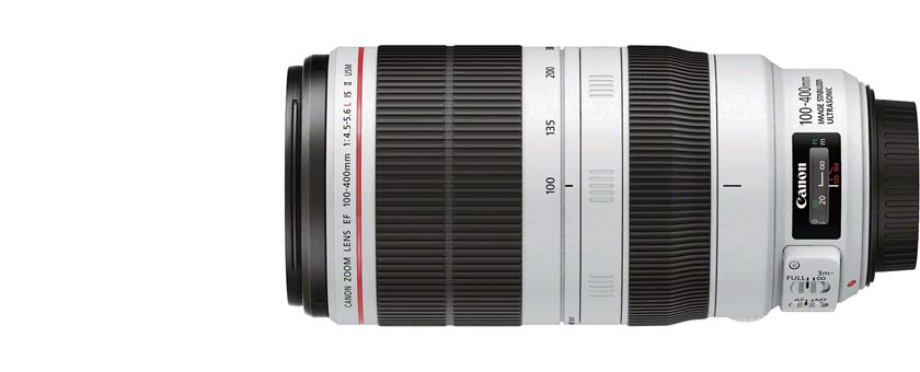 canon-100-400mm-sigma-150-600mm-sports