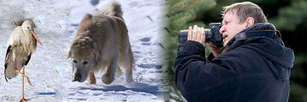 Съёмка фотоаппаратом зимой